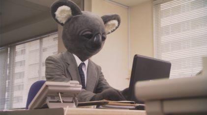 executive koala 1.jpg