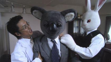 executive koala 2.jpg