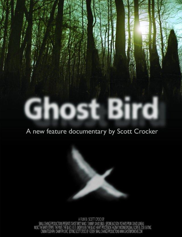 ghost bird 1.jpg