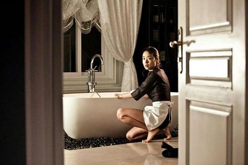 housemaid 2010.jpg