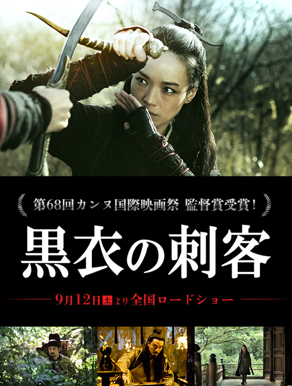 the-assassin-int-poster2.jpg